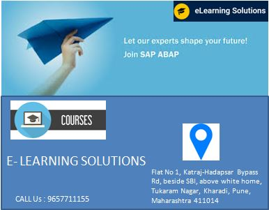 Sap Courses Fees Elearning Solutions Institute Pune
